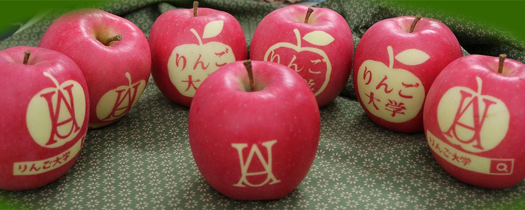 りんご大学ブログ
