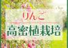 【お知らせ】高密植栽培のページが出来ました。